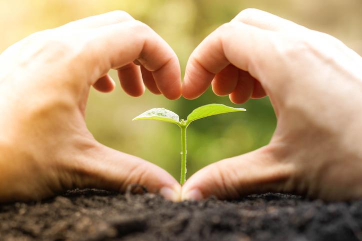 蒔いた種をじっくり育てよう(写真:iStock)