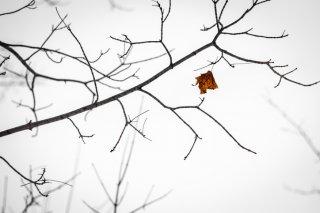 冬の乾燥に負けない「ツヤ肌メイク術」5選…秘訣はベース