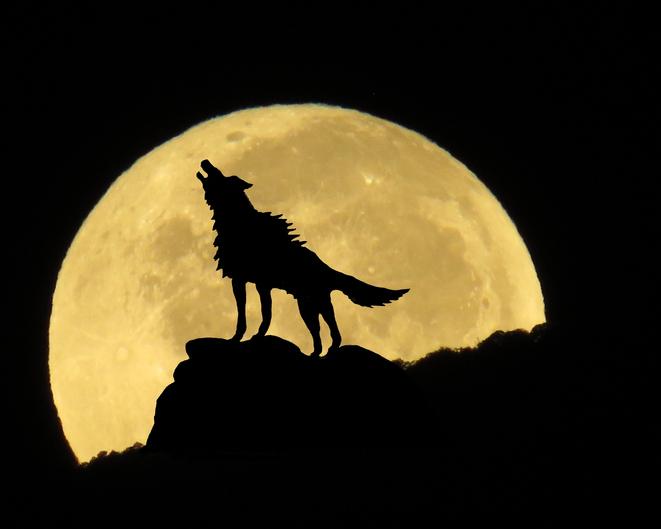 男はオオカミ?(写真:iStock)
