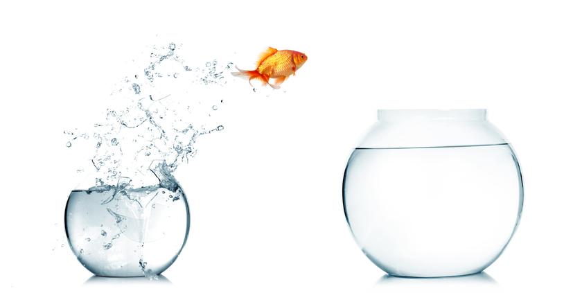 釣った魚にエサをやらないタイプには未練ナシ!(写真:iStock)