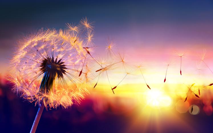 気持ちを伝え合うことで自由になれる(写真:iStock)