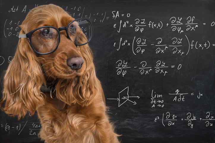 理学系の講座で自分自身の教養も深めちゃおう(写真:iStock)