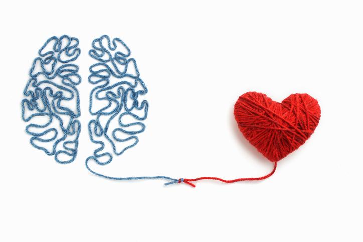 脳の指令で女性ホルモンが分泌される(写真:iStock)