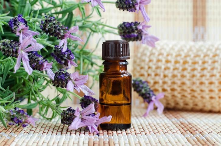 ラベンダーの香りは不眠に効果アリ(写真:iStock)