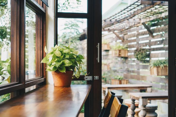 植物がたっぷりのカフェでデートはいかが?(写真:iStock)