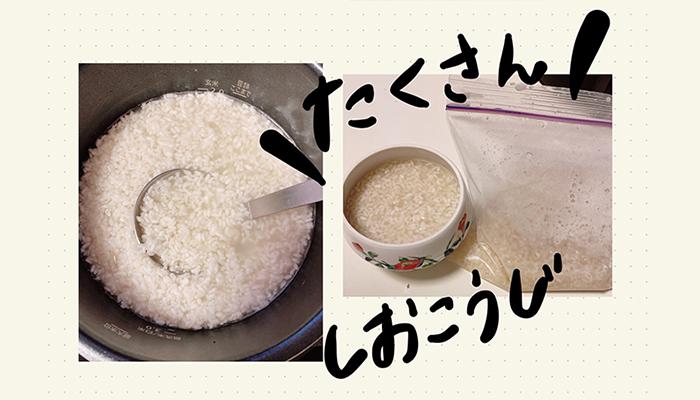 (写真:canちゃん)