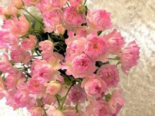 愛と美のオンナの幸せを司る「ピンク花」のとてつもない威力
