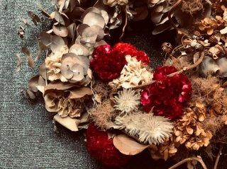 恋は色あせない!情熱的な花「ケイトウ」の今風な活用方法