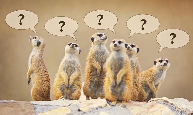 疑問にお答えします!(写真:iStock)