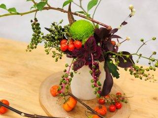 飾ると心がポカポカ♡秋の実物がアナタの幸せを実らせます
