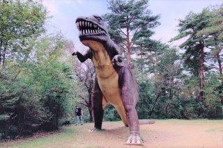 恐竜のおうさま 2020.10.22(木)