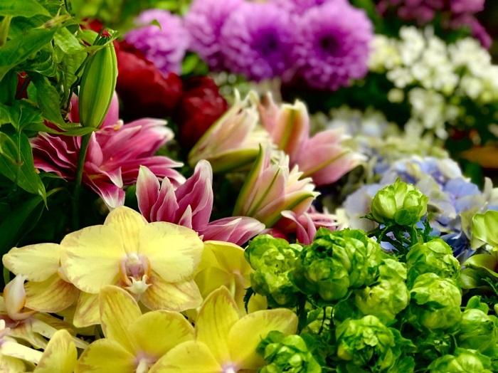 お花屋さんは店まるごと「ヒーリングスポット」でござんすよ