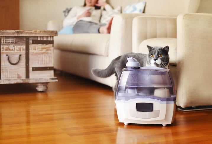 加湿器で部屋をうるうるに(写真:iStock)