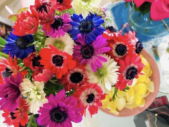 色鮮やかな花姿が恋する人を惑わせる  (写真 浅野光寿)