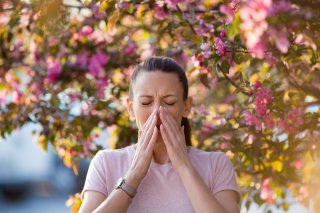 花粉症がつらすぎる(涙)Dr.教えて!「正しい花粉症」対策
