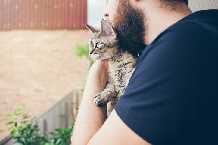 猫好き男性には厳しい世の中(写真:iStock)