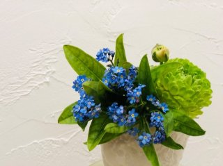 私を忘れないで…「ワスレナグサ」は涙を誘う悲恋の愛の花