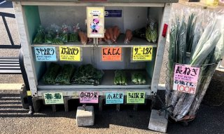 無人野菜販売所にハマってます♡ 2021.4.15(木)
