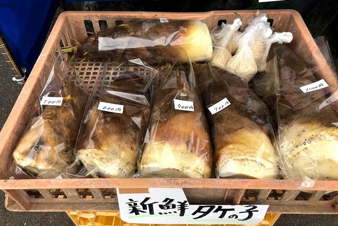 タケノコはまだちょっとお高めだけど、朝採れでこの価格!