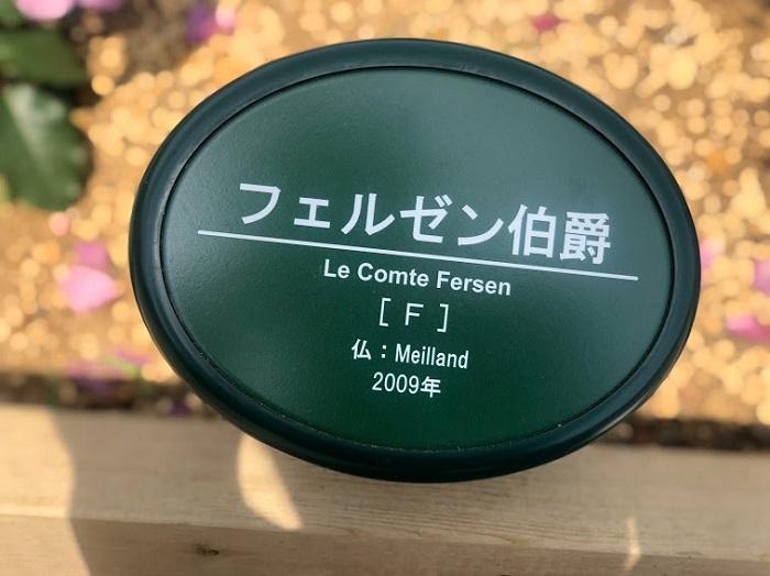 まさかのフェルゼン!(C)コクハク
