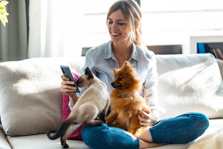 犬や猫は言葉を理解してる?(写真:iStock)